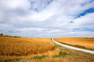 Iowa Scenery